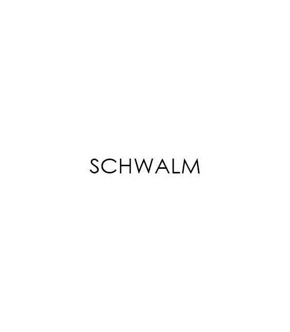 Buy Schwalm 0D8591 Solenoid Choke - Generators Online|RV Part Shop Canada