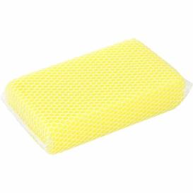 Bug Sponge