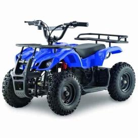 Buy Zunix ATV104 Atv 800W 36V Brushless Blue - Other Activities Online RV