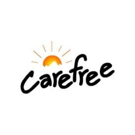 Buy Carefree 86188D00 Fiesta Awning Roller/Fabric 18' Black/Gray/White -